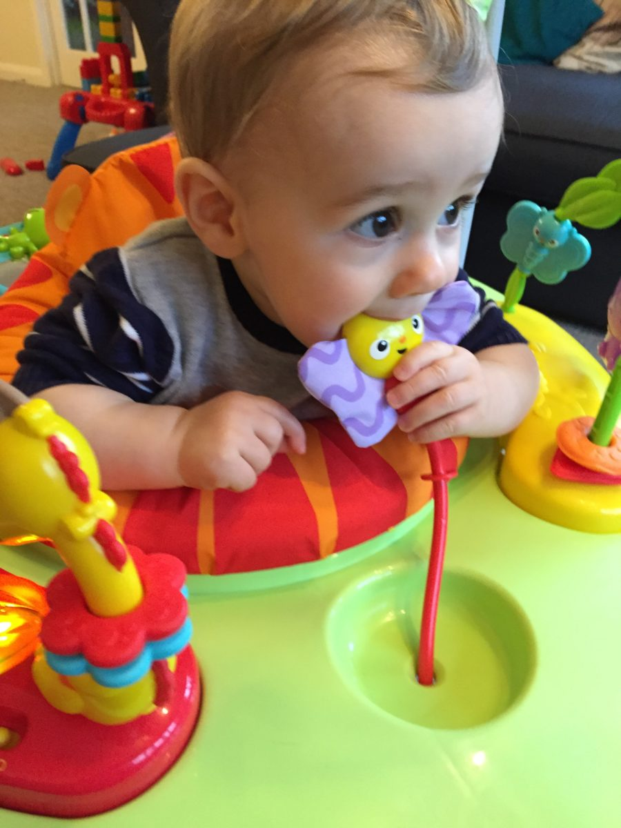 Order a Fisher Price roarin' rainforest jumperoo today from 5eyg5o6unews.ml Delivery free on all UK orders over £
