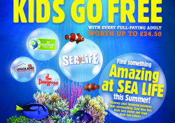 Review and Givaway – WIN a SEA LIFE Family Ticket with Vileda's Kids Go Free Campaign