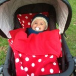 Pram liner and matching stay put blanket from Ginga-Baby