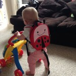 Skip Hop – Zoo Let Ladybug Bag (with reins)