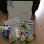 Sassy Bloom Gift Box